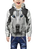cheap -Kids Boys' Active 3D Animal Print Long Sleeve Hoodie & Sweatshirt Gray