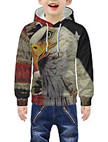 cheap -Kids Boys' Active 3D Graphic Animal Print Long Sleeve Hoodie & Sweatshirt Rainbow
