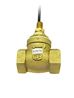 cheap -Reasonable Price Key Oil For Brass Instrument Valve 90 Degree Brass Ball Valve Mini Flow Switch SEN-DB20