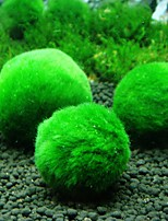 cheap -Fish Tank Aquarium Decoration Anacharis Arquatic Plant Fish Bowl Plants Green Professional Special Material 5 Pieces 4 cm