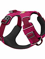 cheap -, front range dog harness, reflective and padded harness for training and everyday, hibiscus pink, xx-small