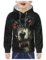 cheap -Kids Boys' Active 3D Graphic Animal Print Long Sleeve Hoodie & Sweatshirt Green