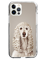 cheap -Animal Case For Apple iPhone 12 iPhone 11 iPhone 12 Pro Max Unique Design Protective Case and Screen Protector Shockproof Back Cover TPU