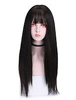 cheap -Synthetic Wig Straight With Bangs Wig Long Brown Grey Black Synthetic Hair 20 inch Women's Exquisite Comfy Black Brown