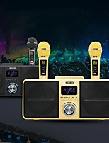 cheap -SD309 Dual Wireless Microphone Bluetooth Speaker KTV Mobile Wireless Karaoke Speaker Wireless Stereo Black 30W SDRD Speaker Set