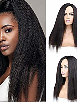 cheap -lydia long yaki straight synthetic hair wigs for african american women nature black 18-22 inch kanekalon afro wig (22, 27#)
