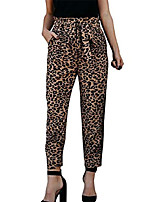 cheap -women's leopard high waist bow tie pants trousers casual paper bag waist pants with pockets size us 4 /tag m (leopard)