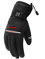 cheap -Full Finger Gloves Men's Waterproof / Skidproof / Protective Camping / Hiking / Ski / Snowboard / Climbing Shell Fabric / Winter