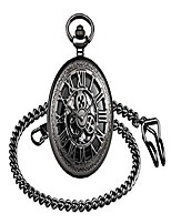 cheap -mechanical skeleton pocket watch gear roman numerals hollow pocket watch with chain