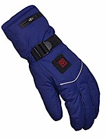 cheap -heated gloves for men women 3.7v 5000 mah rechargeable electric hand warmer thermal warm motorcycle winter cycling skiing (color : blue, size : large)