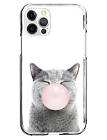 cheap -Cat Case For Apple iPhone 12 iPhone 11 iPhone 12 Pro Max Unique Design Protective Case and Screen Protector Shockproof Back Cover TPU