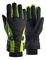 cheap -Full Finger Gloves Men's / Women's Waterproof / Skidproof / Protective Camping / Hiking / Ski / Snowboard / Climbing Fleece / Winter