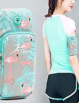 cheap -Wrist Pouch Running Pack for Jogging Bike / Cycling Gymnatics Trekking Sports Bag Portable Lightweight Rain Waterproof Pocket Multi Pocket Poly / Cotton Women's Running Bag Adults Teen