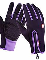 cheap -1 Paar Winter Thermohandschuhe Motorrad Fahrradhandschuhe Winddicht Skihandschuhe Anti-Rutsch Touchscreen Handschuhe, Lila - XL