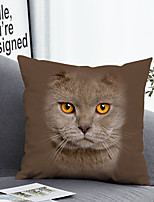 cheap -Cushion Cover with or without Pillow Insert Double Side Print 38x38cm / 45x45cm Polyester Cute Cat