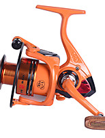cheap -Fishing Reel Spinning Reel 5.2:1 Gear Ratio 10+1 Ball Bearings Easy Install for Sea Fishing / Fly Fishing / Freshwater Fishing