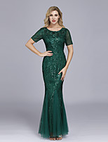 cheap -Mermaid / Trumpet Empire Elegant Party Wear Formal Evening Dress Jewel Neck Short Sleeve Floor Length Tulle with Embroidery 2021