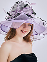 cheap -Vintage Style Elegant Organza / Polyester / Polyamide Hats / Headwear / Straw Hats with Feather / Appliques / Ruching 1 Piece Casual / Holiday Headpiece