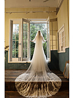cheap -Two-tier Sweet Style Wedding Veil Cathedral Veils with Appliques 94.49 in (240cm) Tulle