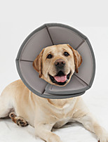 cheap -Dog Cat Pet Cone Pet Recovery Collar Elizabeth circle Adjustable Stress Relieving Safety Anti-Bite Lick Wound Healing After Surgery Protective Outdoor Walking Solid Colored EVA Small Dog Gray