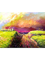 cheap -IARTS Hand Painted rosy clouds Oil Painting   with Stretched  For Home Decoration