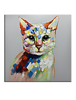 cheap -100% Hand painted Cool Cat Canvas Oil Painting Posters Quadros Animal Wall Art for Living Room Home Decor Cuadros