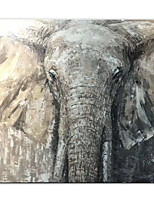 cheap -Oil Painting Handmade Hand Painted Wall Art  Black And White Animal Elephant Home Decoration Decor Rolled Canvas No Frame Unstretched