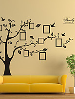cheap -black removable memory tree photo tree foreign trade wall sticker paper factory wholesale 180*250CM