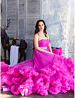 cheap -Ball Gown Elegant Party Wear Dress Strapless Sleeveless Court Train Tulle with Ruffles 2021