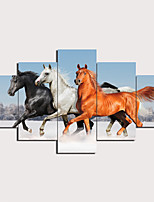 cheap -5 Panels Wall Art Canvas Prints Painting Artwork Picture Horse Painting Home Decoration Decor Rolled Canvas No Frame Unframed Unstretched