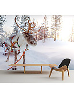 cheap -Mural Wallpaper Wall Sticker Covering Print  Peel and Stick Removable Self Adhesive Snow Deer Festival PVC / Vinyl Home Decor