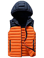 cheap -Men's Hiking Vest Quilted Puffer Vest Winter Outdoor Thermal Warm Windproof Lightweight Breathable Outerwear Winter Jacket Trench Coat Skiing Fishing Climbing Black+Grey Sky blue + dark blue Dark