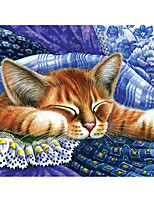 cheap -DIY 5D Diamond Painting Wall Home Decor Decoration Kits Animal Cat for Adults Kids