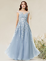 cheap -A-Line Empire Elegant Party Wear Formal Evening Dress Jewel Neck Sleeveless Floor Length Lace Tulle with Appliques 2021