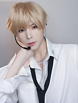 cheap -Short Striaght Full Synthetic Wig for Men Male Hair Fleeciness Realistic Wigs For Men Synthetic Hair Cosplay Wig Curly Boy