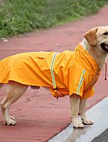 cheap -amazon new pet raincoat reflective big dog raincoat cloak transparent dog raincoat spot pet clothes