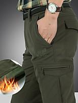 cheap -savina shorts, women xxl fuchsia / light green