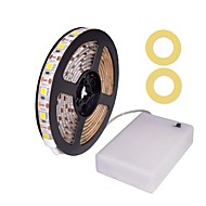 ZDM 100CM/3.28ft Waterproof 5050 SMD 10mm LED Warm White/Cold White/Red/Blue/Green Ribbon Light AA Battery Powered Led Strip Lights DC4.5V