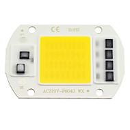 ZDM 1PC LED COB Chip 20W 30W 50W AC220V Warm White/Cold White Light Engine Integrated Smart IC Driver