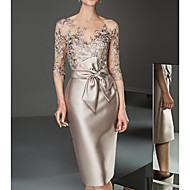 preiswerte -Damen Elegant Spitze Schlank Bodycon Kleid Solide Knielang Bateau