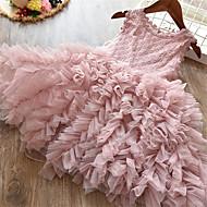 Χαμηλού Κόστους -Παιδιά Νήπιο Κοριτσίστικα Ενεργό χαριτωμένο στυλ Πάρτι Γενέθλια Πεταλούδα Μονόχρωμο Δαντέλα Σουρωτά Αμάνικο Μίντι Φόρεμα Λευκό
