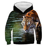 Kids Boys' Active Street chic Tiger Print 3D Animal Print Long Sleeve Hoodie & Sweatshirt Rainbow