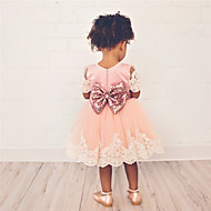 Kids Toddler Girls' Sweet Cute Solid Colored Lace Trims Short Sleeve Above Knee Dress Blushing Pink