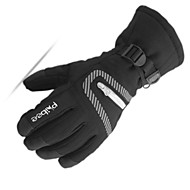 Ski Gloves Men's Snowsports Full Finger Gloves Winter Warm Cloth Coating Ski / Snowboard Hiking Outdoor Exercise