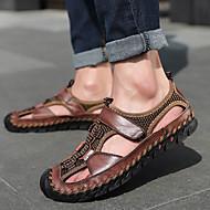 ราคาถูก -สำหรับผู้ชาย หนังสัตว์ ฤดูร้อนฤดูใบไม้ผลิ คลาสสิก / อังกฤษ รองเท้าแตะ วสำหรับเดิน ระบายอากาศ สีดำ / สีน้ำตาลอ่อน / น้ำตาลเข้ม