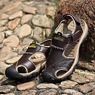 ราคาถูก -สำหรับผู้ชาย หนังสัตว์ ฤดูร้อนฤดูใบไม้ผลิ Sporty / Preppy รองเท้าแตะ วสำหรับเดิน ระบายอากาศ สีน้ำตาลอ่อน / น้ำตาลเข้ม / สีกากี