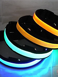 cheap -Dog Collar LED Lights Genuine Leather