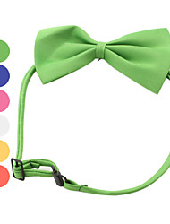 cheap -Cat Dog Collar Adjustable / Retractable Bowknot Textile Red Green Pink
