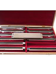 Недорогие -Кейн - (k2413) профессиональные тремоло гармоника 12 клавиш pack/24 holes/24 тонах