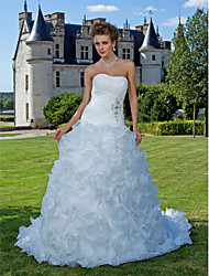 cheap -Fit & Flare Wedding Dresses Strapless Chapel Train Organza Sleeveless with 2020
